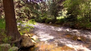 Upper-Bear-Creek